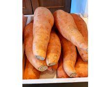 Aust Sweet Potatoes 1 kg